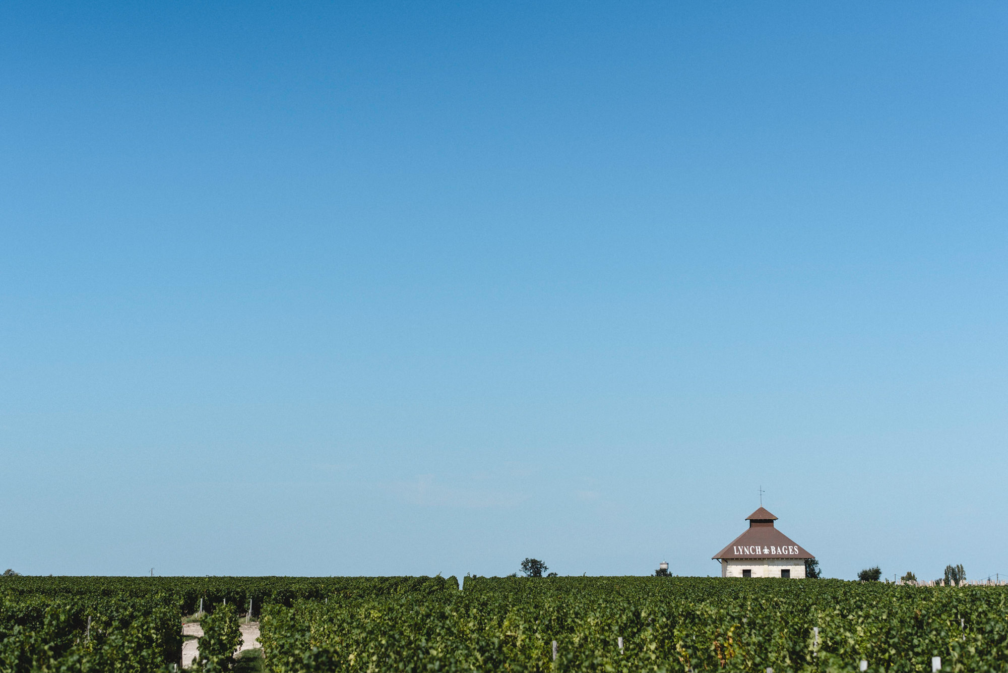 WillyBroussePhotography-wedding-vineyards-france-bordeaux-Janna-Eric-041
